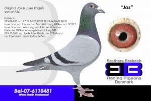 BEL-07-6110481 Jos