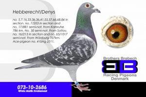 DAN073-10-2686