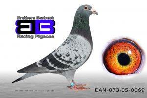 DAN073-05-69