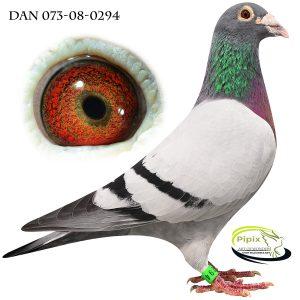 DAN073-08-294 Ren de Klak