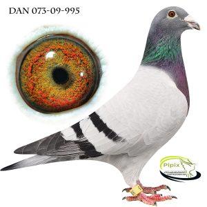 DAN073-09-995 Ren De Klak