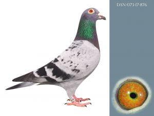 DAN073-17-876 Janssen efter Vinterjongen