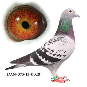 DAN073-13-28 Jos de Klak. Helsøster til 2200