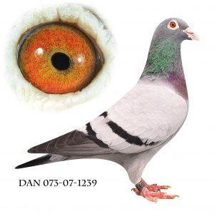 DAN073-07-1239 Brøbech. Datter af 632