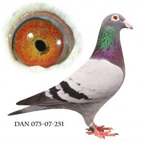 DAN073-07-251 Helsøster til 702