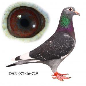 DAN073-16-729 Datter af Nationalvinder