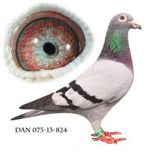 DAN073-13-824 Jos De Klak. Helsøster til 2200
