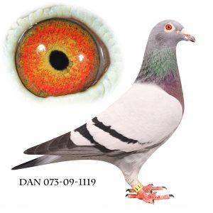 DAN073-09-1119 Blå Brøbech. Søster til Nationalvinder