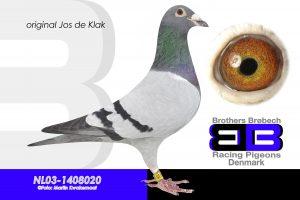 NL-03-1408020 Super avler