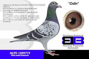 NL-99-1209719 Jos De Klak søn af 613