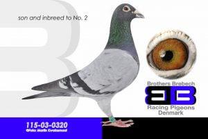 03-0320(1024x683)