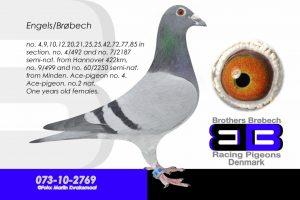 DAN073-10-2769