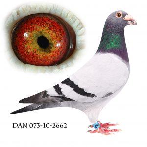 DAN073-10-2662 Klak-Engels. OL-due