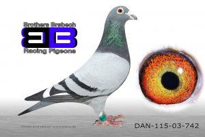 DAN073-03-742 Nationalvinder Karlsruhe 792km
