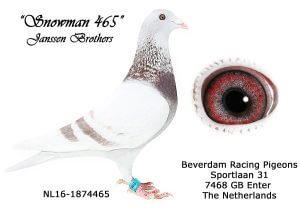 NL-16-1874465