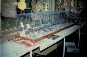 4H udstilling 1991 eller 1992