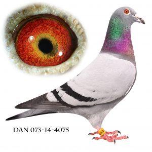 DAN073-14-4075 Flor Engels-Brøbech