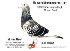 Dolle – Jan Aarden