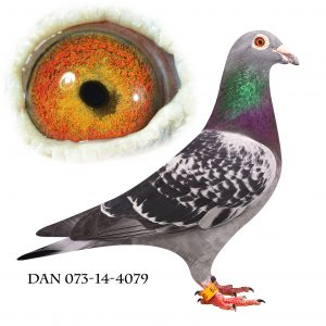 DAN073-14-4079 Nr. 1/113 sekt. nr. 1/319 reg. nr. 3/644 Nat. München 881km.