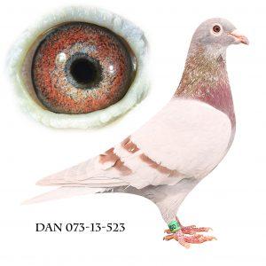 DAN073-13-523 Janssen. Mor til sektionsvinder fra Giessen