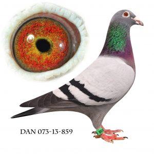 DAN073-13-859. Datter af 702