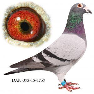 DAN073-15-1737 Brøbech-Engels. Nr. 4. Nat. Karlsruhe 786km.