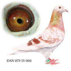 DAN073-13-6 Janssen. Superavler