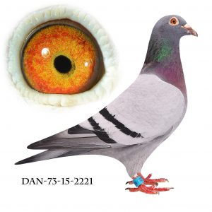 DAN073-15-2221 Hebberecht. Mor til Regionsvinder Dredsen