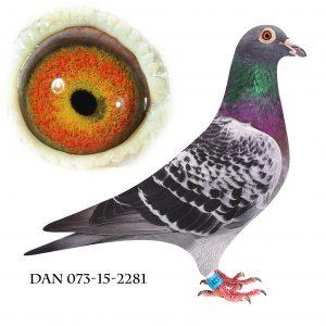DAN073-15-2281 Emil Denys. Barnebarn Kleine Tee