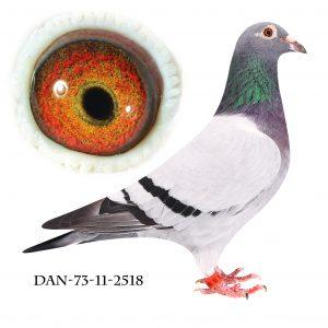 DAN073-11-2518 Jos De Klak. Bedstemor til 3 sektionsvindere.
