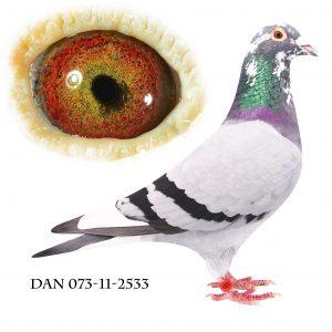 DAN073-11-2533 Flor Engels. Far til 3 sektionsvindere