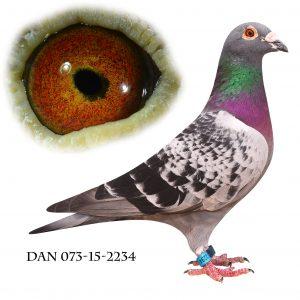 DAN073-15-2234 Brøbech Blåtavlet.