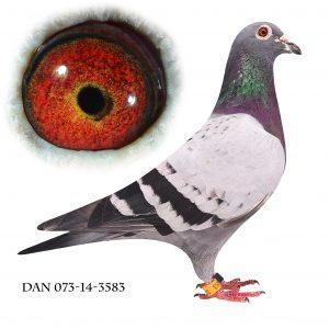 DAN073-14-3583. Nr. 4/382 sekt. Nr. 10/1648 reg. Stendal 414km.